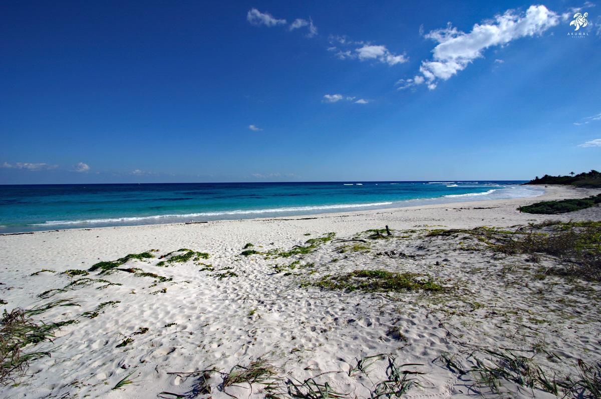 A Sian Kahn wild beach, tha same as it was 100 years ago.