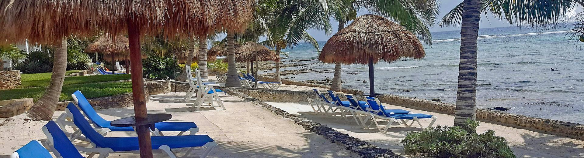 Our private beach with beach loungers and palapas