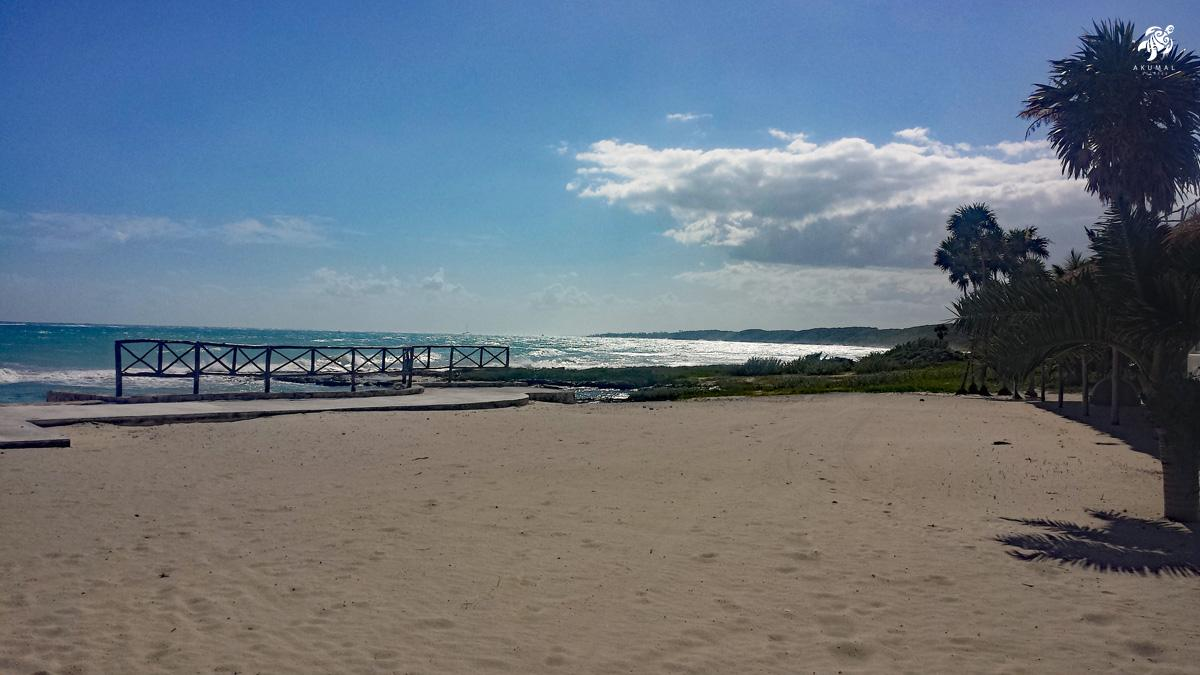 A wild natural beach of the Yucatan