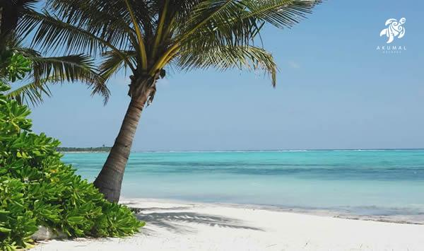 Soliman Bay beach has a great large shady beach and of course perfect Caribbean blue water