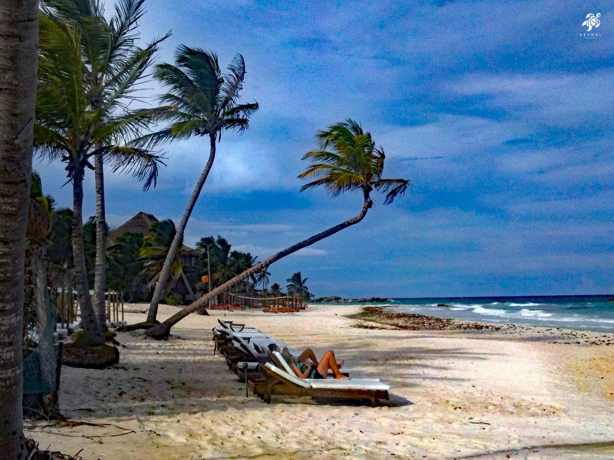 Loungin on a gorgeous beach in the Mayan Riviera is a favorite past time