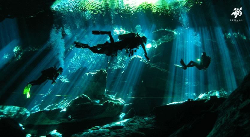 Diving an open cenote is a beautiful and unique experience