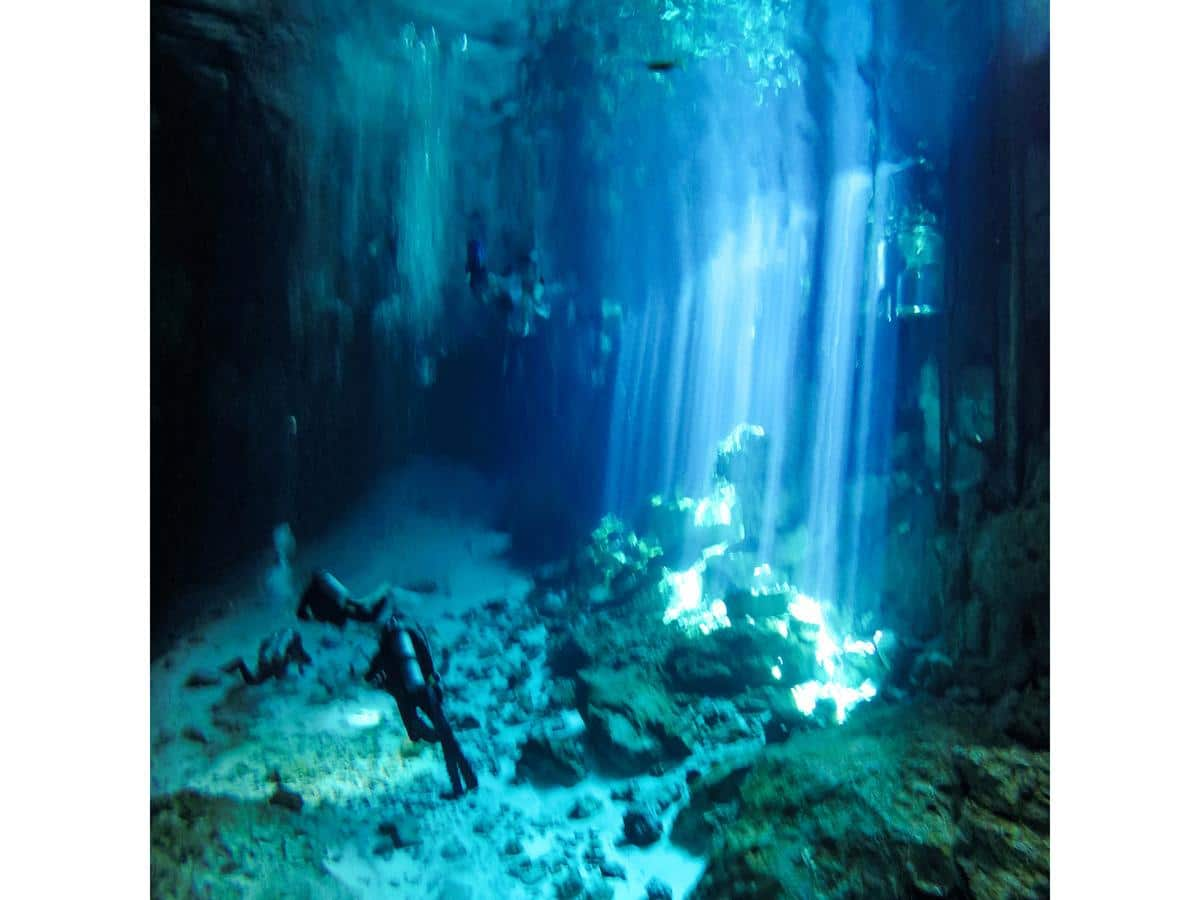 Beneath the surface of a cenote with divers