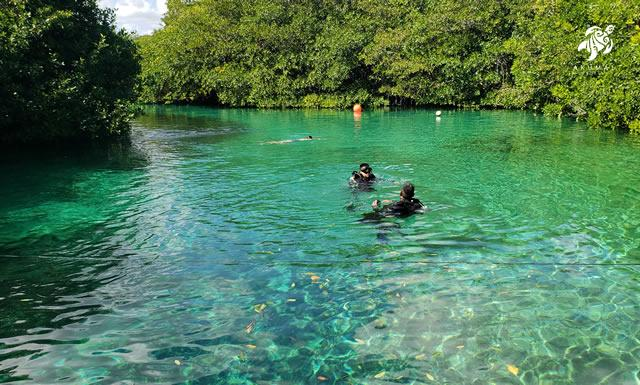 Casa Cenote has wonderful swimming and is next to Tankah beach