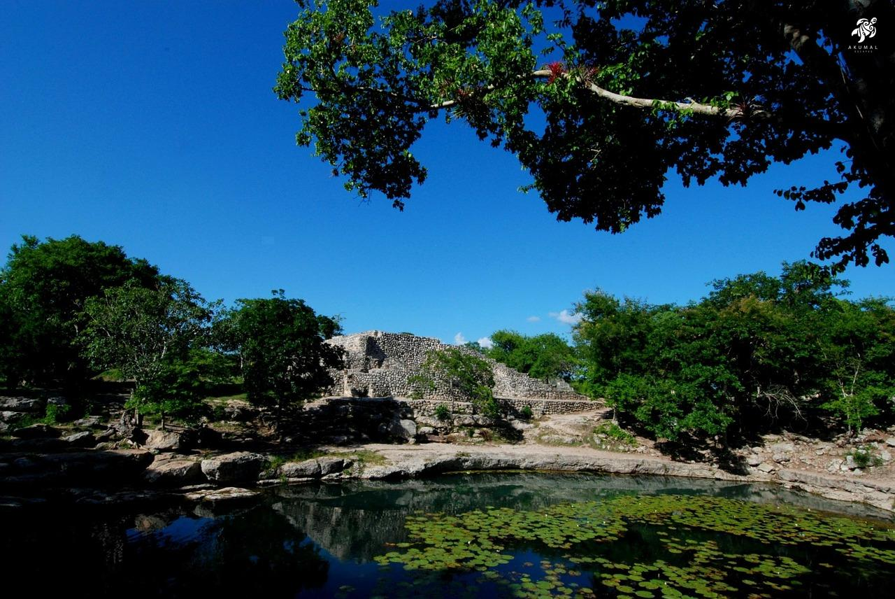 Often Mayan ruins are found right next to cenotes, they were so important to the Mayans