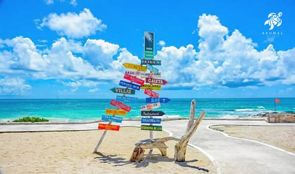 Local direction signs and a driftwood seat on a Mayan Riviera beach