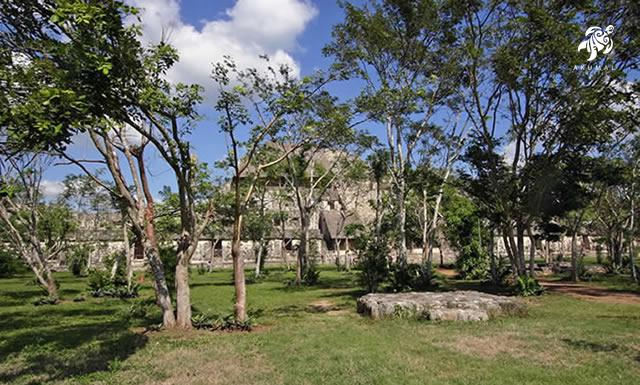 Muyil was an earlier city the Maya built