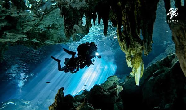 There are many activities that are offered in Maya Riviera's cenotes
