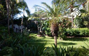 Our gardens are home to many tropical plants and animals