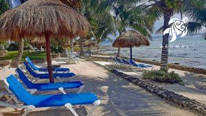 Another view of La Sirena beach: plenty of loungers, palapas and space
