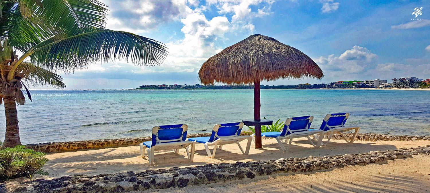 Beach loungers and palapa up close