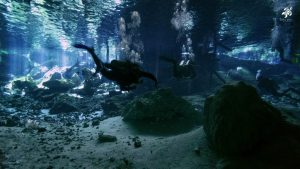 The beauty of divign deep in a cenote