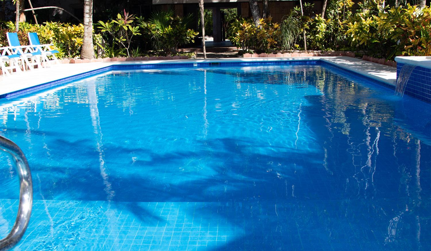 A closeup of our pool and it's sun ledge