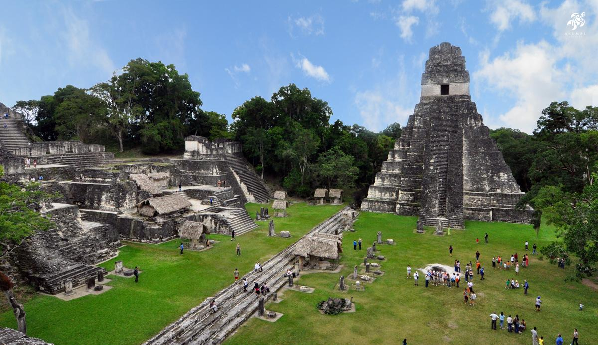The ruins of Tikal as seen from above in the lush jungle