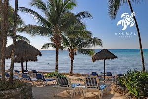 Seascape, La Sirena 1: Your beach view and your private beach loungers and chairs!
