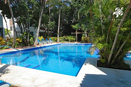 Our pool follows the Caribbean color theme: white natural coping and blue tiles
