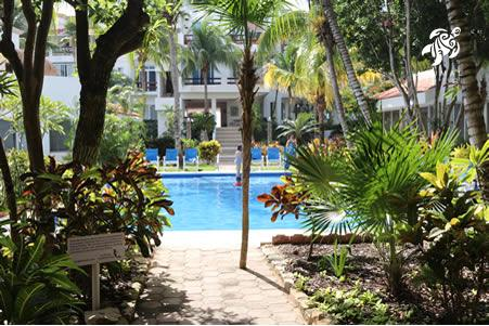 A view of our pool from the entrance depicting our privacy
