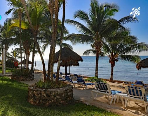 A view from our private lawn area as it meets the beach and loungers