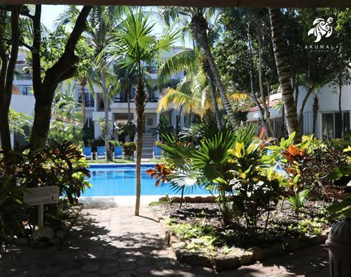 Looking from the stree building into our private oasis you see the pool surrounded by gardens