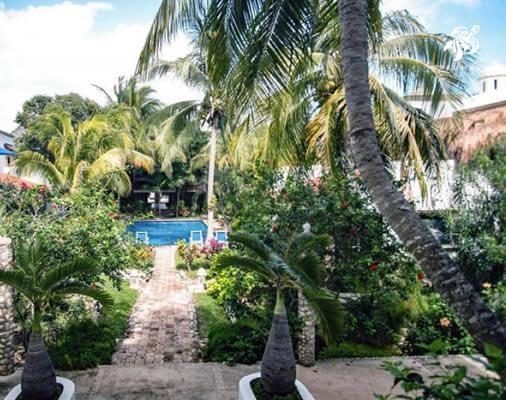 Our large pool is the center of our gardens